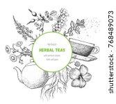 herbal tea vector illustration. ... | Shutterstock .eps vector #768489073