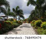 designed walkway with colorful...   Shutterstock . vector #768490474