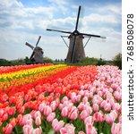 dutch wind mills | Shutterstock . vector #768508078
