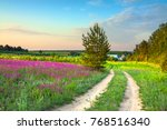 Summer Rural Landscape With A...