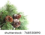 green pine christmas tree green ... | Shutterstock . vector #768530890