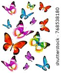 beautiful color butterflies set ... | Shutterstock .eps vector #768538180