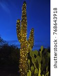 saguaro cactus decorated with a ... | Shutterstock . vector #768643918
