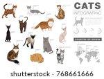 cat breeds infographic template ...   Shutterstock .eps vector #768661666