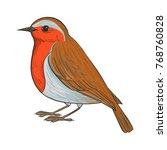 robin  vector bird  hand drawn... | Shutterstock .eps vector #768760828