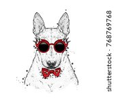 a beautiful bull terrier with... | Shutterstock .eps vector #768769768