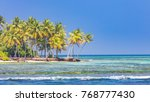 beach background and sea and... | Shutterstock . vector #768777430