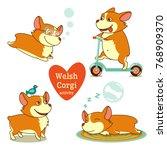 welsh corgi activity  diving... | Shutterstock .eps vector #768909370