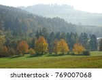 foggy autumn landscape with...   Shutterstock . vector #769007068