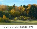 colorful autumn landscape | Shutterstock . vector #769041979