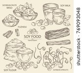collection of different soy... | Shutterstock .eps vector #769093048