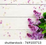 floral pattern of a branch of... | Shutterstock . vector #769103713