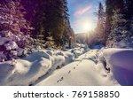 wonderful wintry landscape.... | Shutterstock . vector #769158850