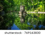 pond in a forest in sintra ... | Shutterstock . vector #769163830