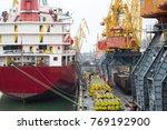 vessel dry cargo on loading ... | Shutterstock . vector #769192900