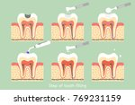 teeth cartoon vector flat style ... | Shutterstock .eps vector #769231159