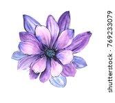 watercolor wild tropical exotic ... | Shutterstock . vector #769233079