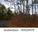 Autumn Colors In Full Blast At...