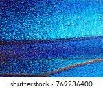 a bright blue opalescent... | Shutterstock . vector #769236400