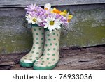 daisy and daffodils in polka dot boots - stock photo
