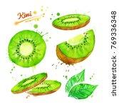 watercolor illustrations set of ... | Shutterstock . vector #769336348