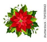 vector red christmas poinsettia ...   Shutterstock .eps vector #769338463