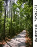 goose creek state park | Shutterstock . vector #769363078