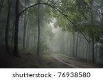 road through a green forest | Shutterstock . vector #76938580