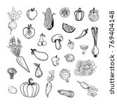 vector collection of drawn... | Shutterstock .eps vector #769404148