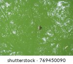 water surface. photo image... | Shutterstock . vector #769450090