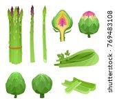 bright vector illustration of... | Shutterstock .eps vector #769483108