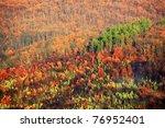 forest landscape in autumn... | Shutterstock . vector #76952401