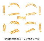 wheat ears or rice icons set.... | Shutterstock . vector #769559749
