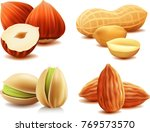 group of different nuts almond  ... | Shutterstock .eps vector #769573570