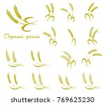wheat ear symbols for logo... | Shutterstock . vector #769625230