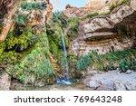 david's waterfall at ein gedi... | Shutterstock . vector #769643248