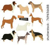 Dog Collection Geometric Style...