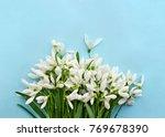beautiful white snowdrops... | Shutterstock . vector #769678390