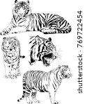 vector drawings sketches... | Shutterstock .eps vector #769722454