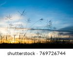 colorful dramatic sky with... | Shutterstock . vector #769726744