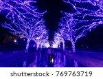 tourists enjoy the illumination ... | Shutterstock . vector #769763719