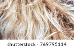 long natural blonde vertical... | Shutterstock . vector #769795114