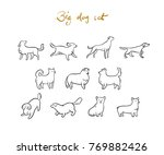 set of vector outline dogs ... | Shutterstock .eps vector #769882426