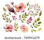 watercolor flowers and bird set.... | Shutterstock . vector #769941679