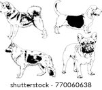 vector drawings sketches... | Shutterstock .eps vector #770060638