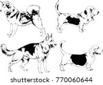 vector drawings sketches... | Shutterstock .eps vector #770060644