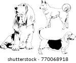 vector drawings sketches... | Shutterstock .eps vector #770068918