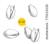 hand drawn pistachios set. open ... | Shutterstock .eps vector #770113120