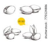 hand drawn pistachios set.... | Shutterstock .eps vector #770124886