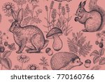 forest animals and plants... | Shutterstock .eps vector #770160766